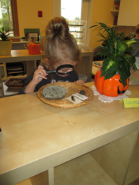 Private Preschool in Crystal Lake, Cary, Lake in the Hills, Algonquin